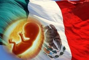 ¡Que México Viva!…¡Nuevo León Ama la Vida… ! y En Guerrero la propuesta de ley proaborto es congelada.